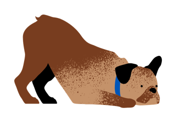Illustrated Brown Dog